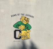 Home of the jaguars pic.jpg